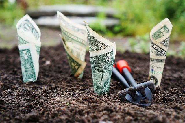 kredyt odnawialny czy debet na koncie